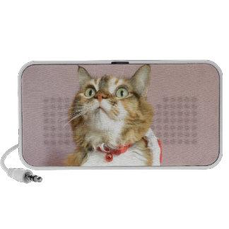 Merry Christmas cat santa puss Notebook Speakers