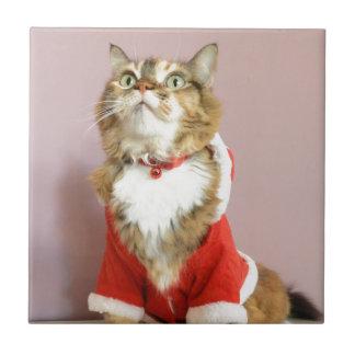 Merry Christmas cat santa puss Tiles