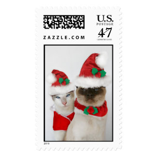 Merry Christmas Cats! Postage
