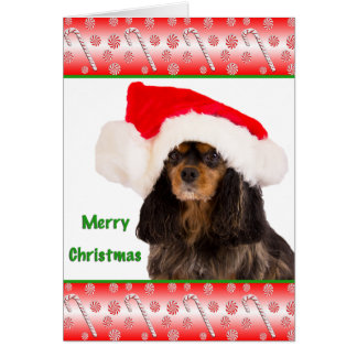 Merry Christmas Cavalier King Charles Card
