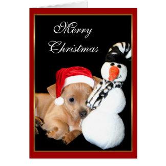 Merry Christmas Chihuahua greeting card