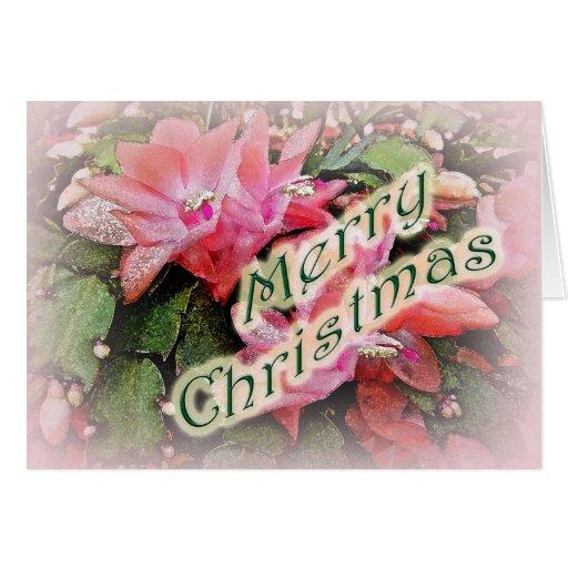 Merry Christmas Christmas Cactus Flowers Greeting Card