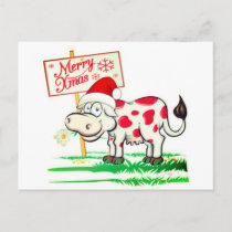 Merry Christmas Cow Postcard