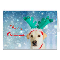 Merry Christmas Cute Pet Dog Labrador Antlers
