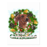 Merry Christmas Dachshund Postcard