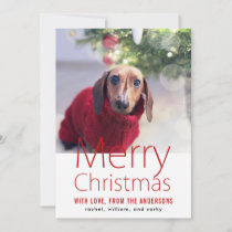 Merry Christmas Family Pet Holiday Card