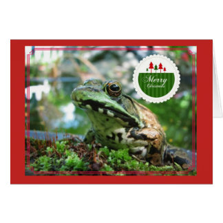 Merry Christmas Frog Card