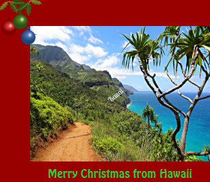merry christmas from hawaii holiday postcard - Merry Christmas In Hawaii