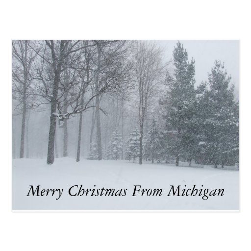 Merry Christmas from Michigan Winter Snow Postca Postcard