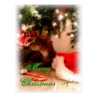 Merry Christmas from the Cat Postcard