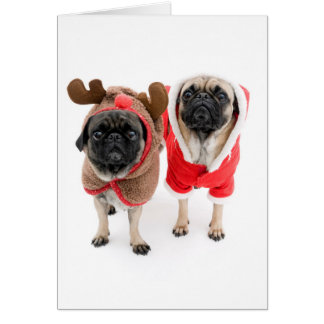 Merry Christmas from the Pugs Card