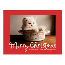 Merry Christmas Fun Typography | Photo Postcard