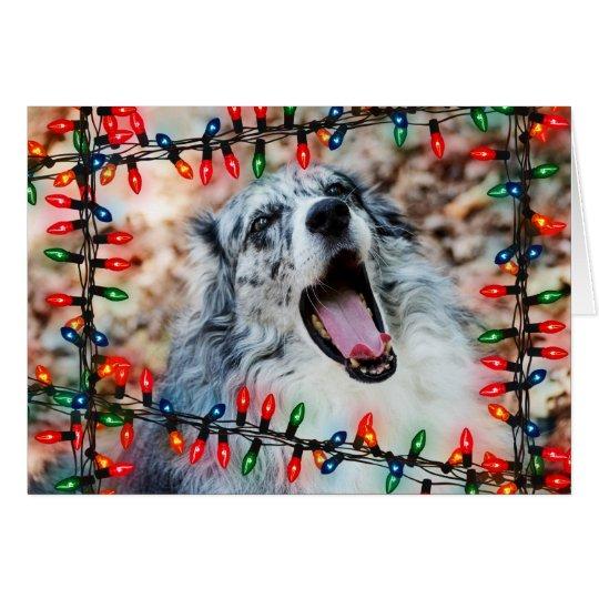 Merry Christmas: Funny Dog Christmas Card