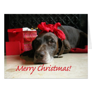 Merry Christmas german shorthaired pointer Large Greeting Card