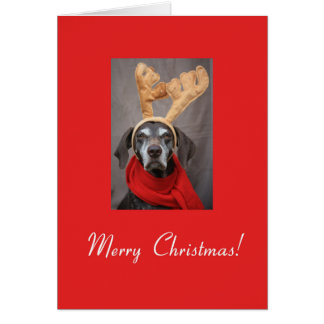 Merry Christmas german shorthaired pointer Stationery Note Card