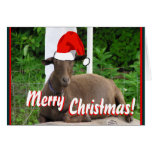 MERRY CHRISTMAS GOAT GREETINGS CARD
