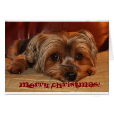Merry Christmas Greeting Card at Zazzle