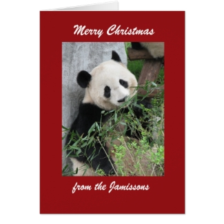 Merry Christmas Greeting Card Panda, Red Border