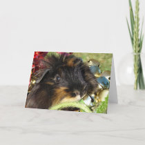 Merry Christmas!  Guinea Pig Holiday Card