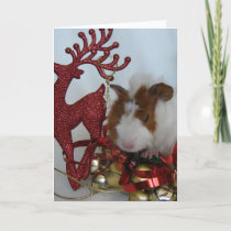 Merry Christmas!  Guinea Pig with reindeer Holiday Card