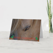 Merry Christmas Happy Holidays Christmas horse Holiday Card