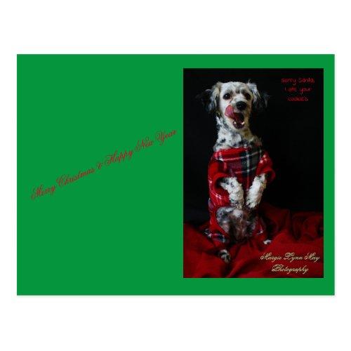 Merry ChristmasHappy New Yearpuppy Postcard