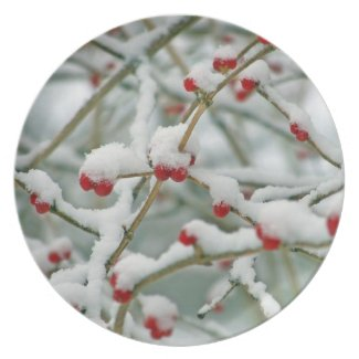 Merry Christmas Happy New Year red berries Dinner Plate