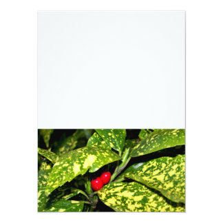 Merry Christmas Hedge 5.5x7.5 Paper Invitation Card