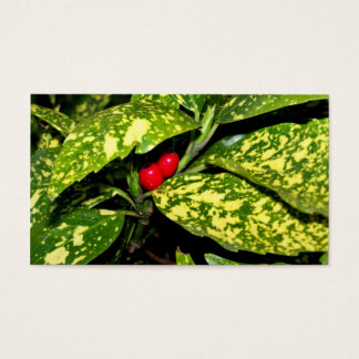 Merry Christmas Hedge Business Card