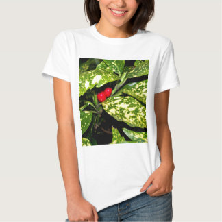 Merry Christmas Hedge Shirt