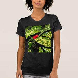 Merry Christmas Hedge Tee Shirt