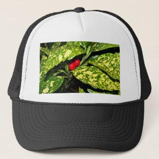 Merry Christmas Hedge Trucker Hat