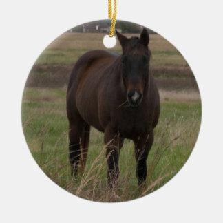 Merry Christmas Horse Ornament