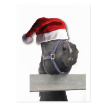 Merry Christmas Horse Postcard