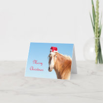 Merry Christmas  - horse wearing a Santa hat Holiday Card