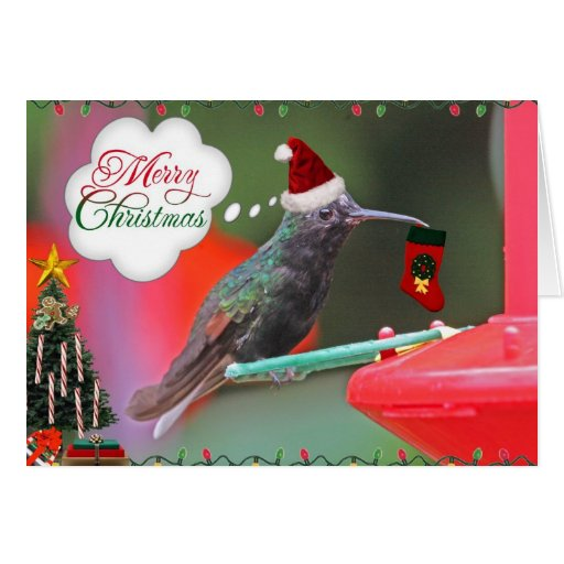 Merry Christmas Hummingbird Greeting Card