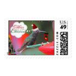 Merry Christmas Hummingbird Postage