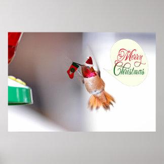 Merry Christmas Hummingbird with Xmas Stocking Posters
