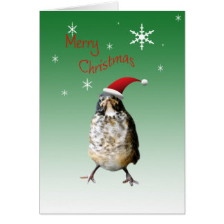 Merry Christmas Humorous Robin in Santa Hat Card