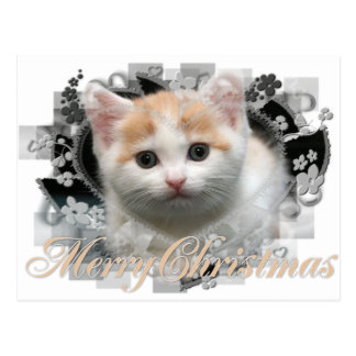 Merry Christmas Kitten - Holiday Postcards
