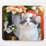 Merry Christmas Kitten Mousepad