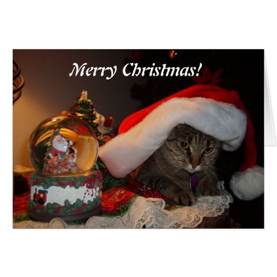 Merry Christmas Kitty! Card