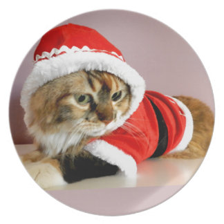 Merry Christmas kitty cat Santa suit Party Plates