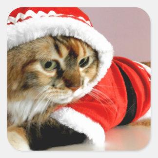 Merry Christmas kitty cat Santa suit Square Sticker