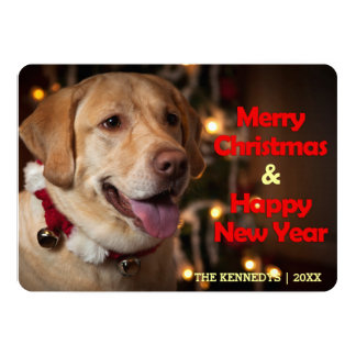 Merry Christmas - Labrador Retriever Bell Collar Card