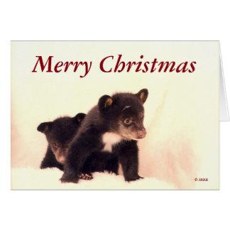 Merry Christmas - Lakota & Paiute Greeting Card