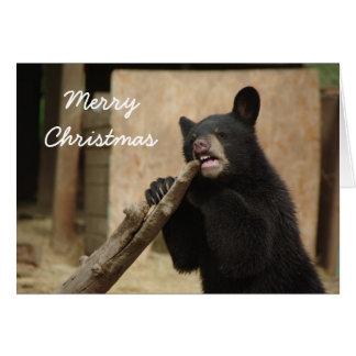 Merry Christmas - Lanikai Card