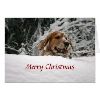 Merry Christmas -Let it Snow Card