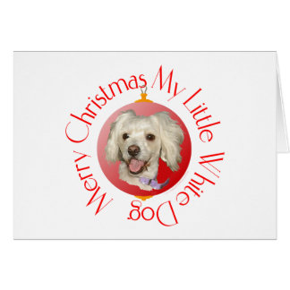 Merry Christmas Little White Dog Poodle / Bichon Card