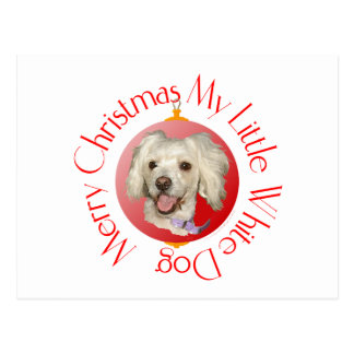 Merry Christmas Little White Dog Poodle / Bichon Postcard